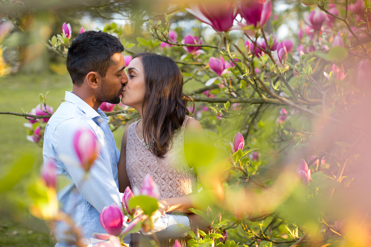 south asian couple kissing in between pink magnolia blossom